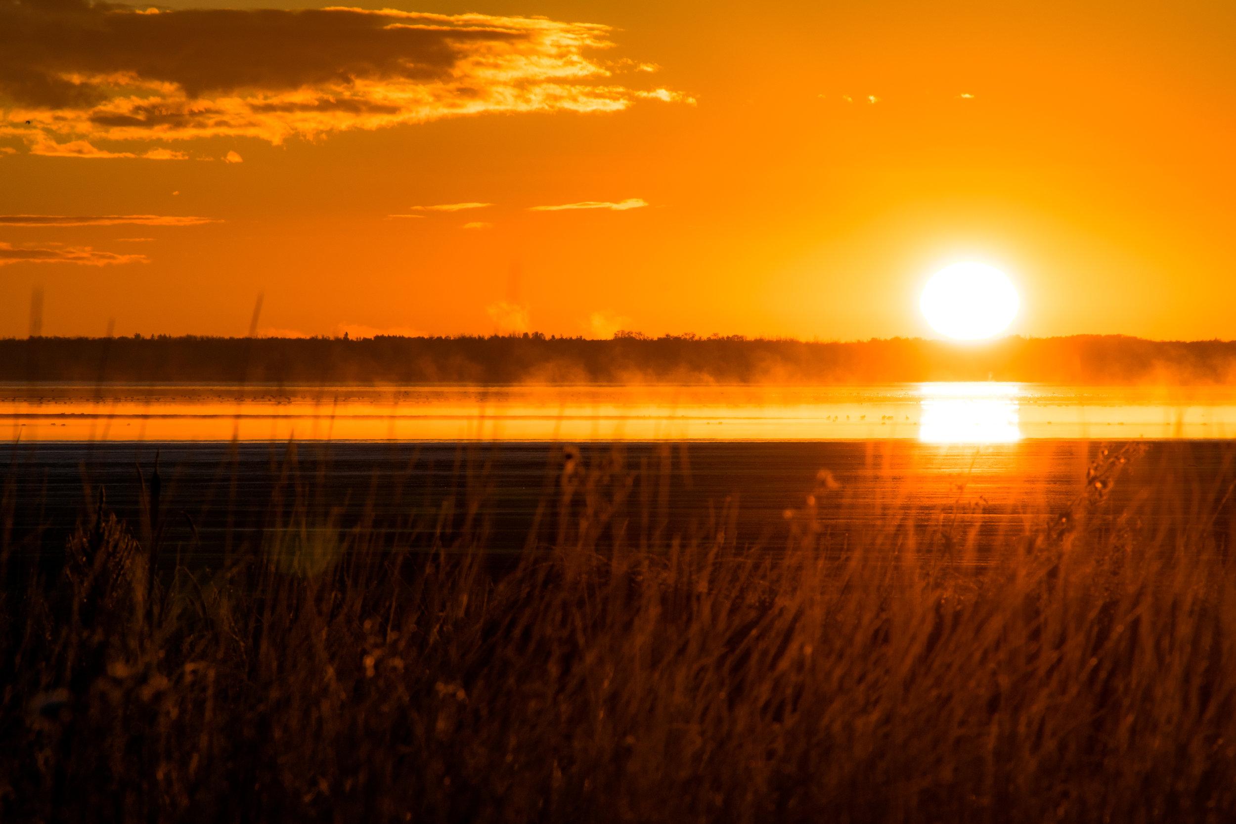 sunrise93-033.jpg