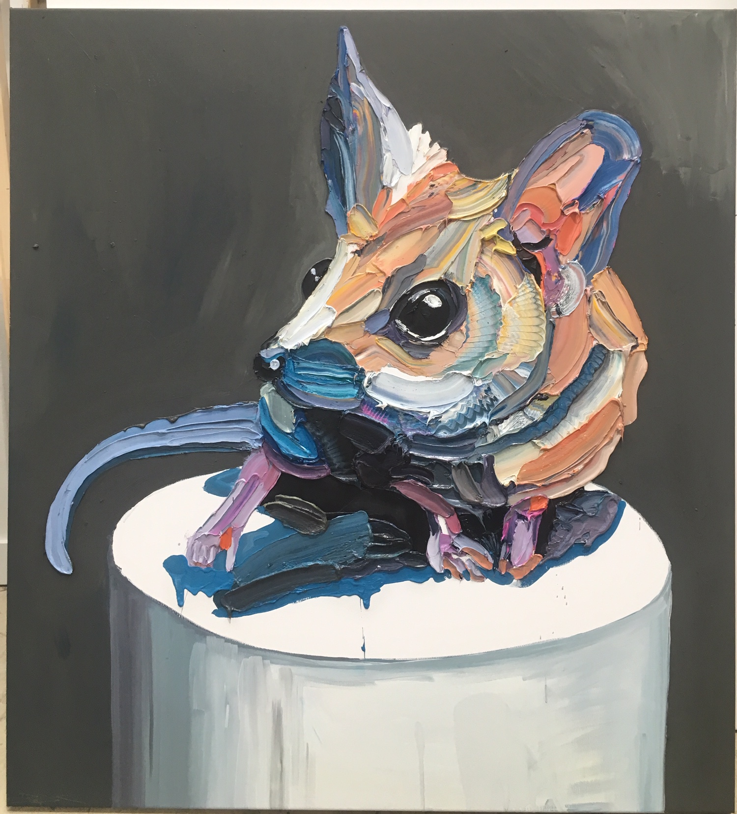 'Fat tailed Dunnart' SOLD
