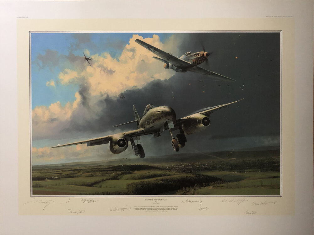Running the Gauntlet by Robert Taylor signed by USAAF /& Luftwaffe Aces