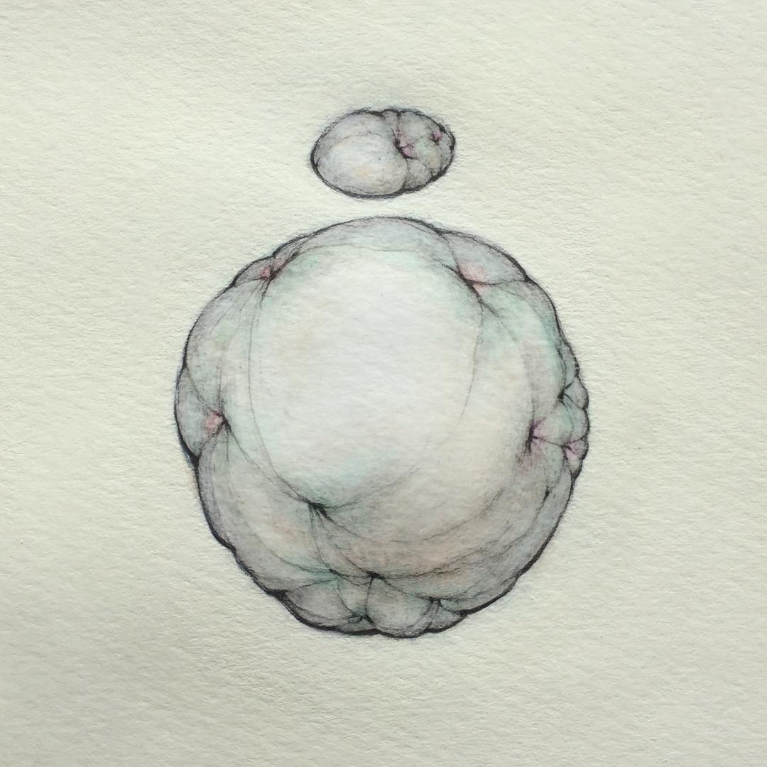 "Small Ellipsoid Over Large Ovoid on Yellow   9"" x 9"" - 2019"