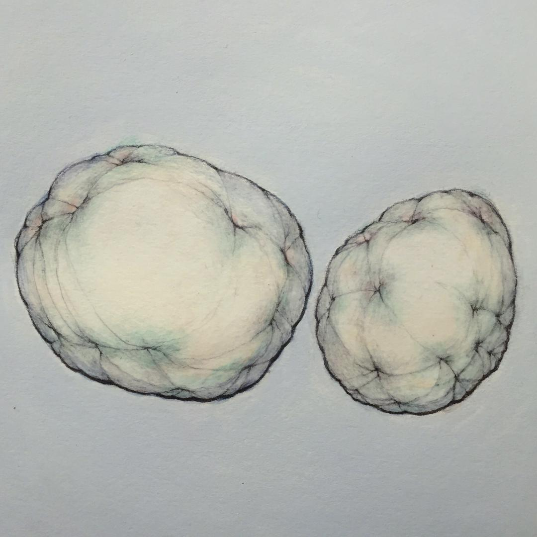 "Ellipsoid and Ovoid on Grey Blue   9"" x 9"" - 2019"