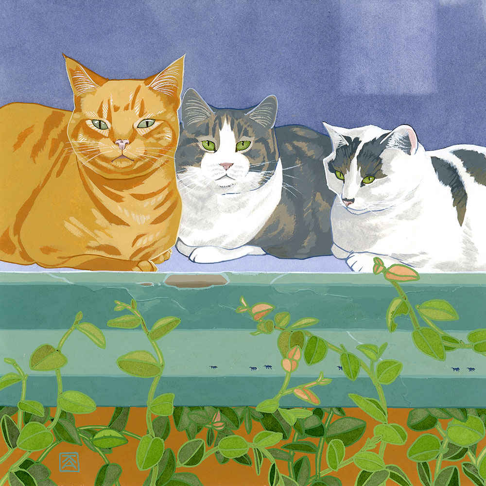 Cats_Flat_Crop_Color.jpg