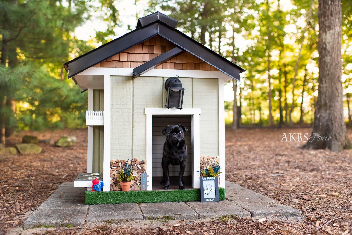 canine-cottage-w-stitch_40556674913_o.jpg
