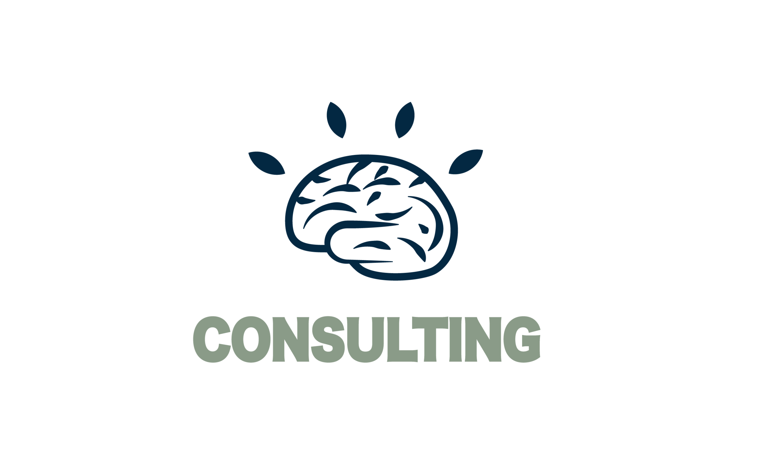 Consulting-CI-Color-NEU.png