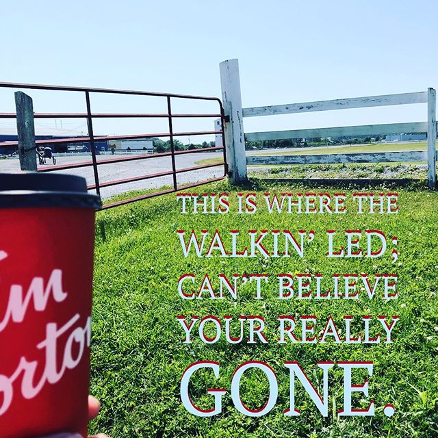 Had a coffee with my dad today.  If he had a grave, it would be here. Don't know what I'll do when this place is gone.  #imissyoudaddy #harnessracing #exhibitionparkraceway #saintjohn #whereicomefrom #alwaysandforever #daddysgirl #loveyoudoll