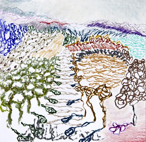 "Olana, 13,  Oil pastel on paper, 14"" x 15"", 2016"