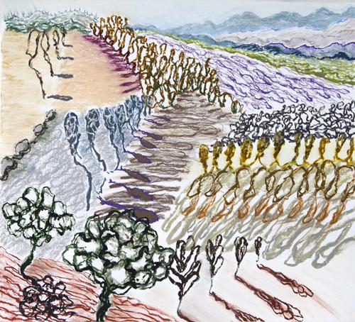 "Olana, 15,  Oil pastel on paper, 19"" x 21"", 2016"