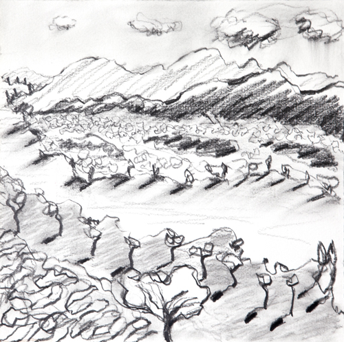 "Olana, 22,  Graphite on paper, 12"" x 12"", 2016"