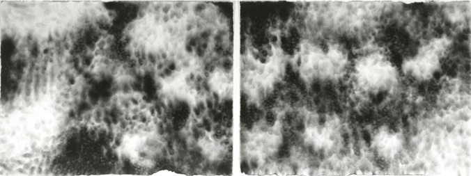 "Cumulus 6 & 7 ,  22"" x 60"", Candlesmoke and Fingerprints on Paper"