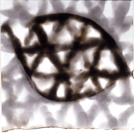 "Meditation # 2,  8"" x 8"", Candle Smoke on Paper, 1997"