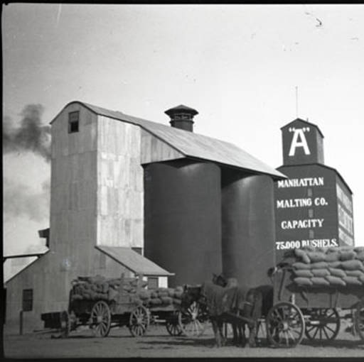 Manhattan-grain-elevator-and-loaded-wagons-Montana-Memory-Project.jpg