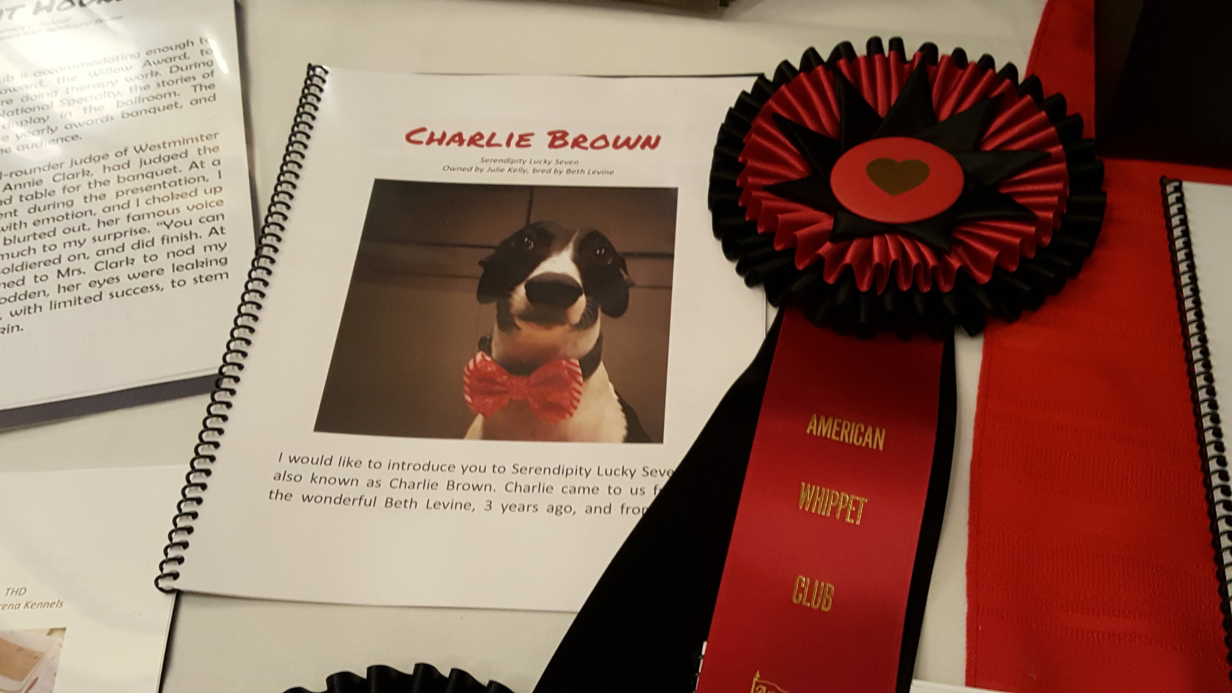 Charlie's Willow Award presentation at the 2018 AWC National Specialty