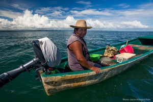 Commercial fishing - Small scale, artisanal, commercial fishing is an essential part Belize's culture. There are currently 2,513 licensed commercial fisherman in Belize and only 83 licensed gillnet fishers.The Coalition for Sustainable Fisheries, which includes the largest organization of commercial fishermen in the country, supports a healthy and sustainable commercial fishery. This requires the elimination of unsustainable fishing methods such as gillnetting.