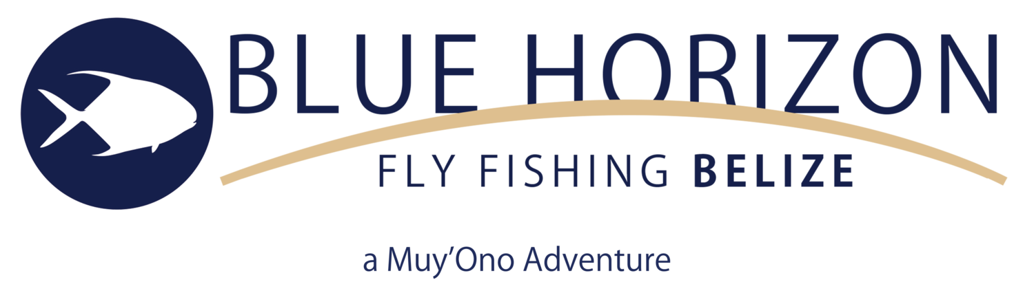 Blue Horizon operates inside the protection of the Belize Barrier Reef. This is the epicenter of the finest flats in the world. We fish daily around a chain of small cayes from north of Dangriga to south of Placencia. Miles of undisturbed flats surround each of our resort options, increasing your chances of success at hitting the grand slam: permit, tarpon and bonefish.