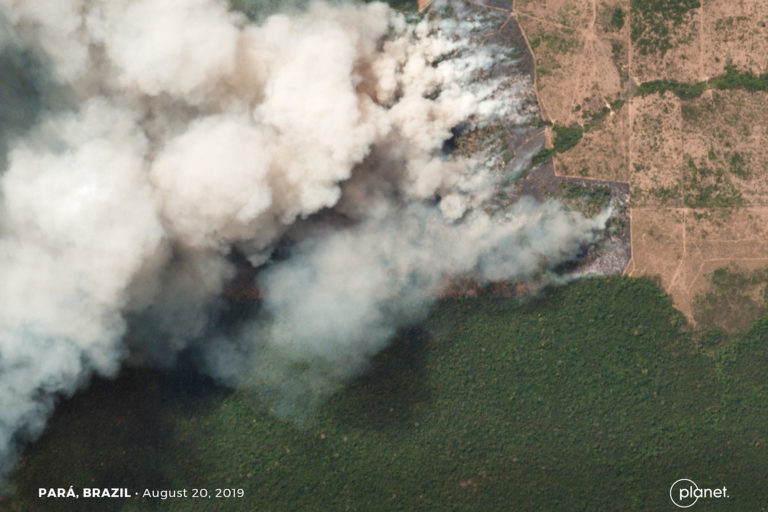 Satellite image from Planet and reporting by Mongabay.com