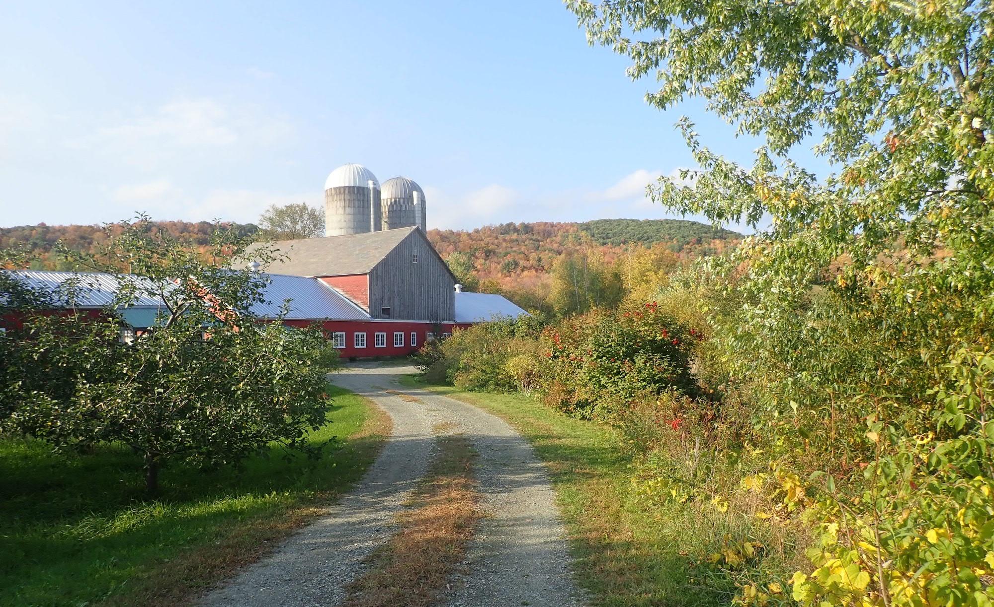 Farm+Between+Driveway.jpg