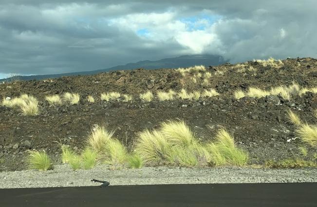 landscape of the big island