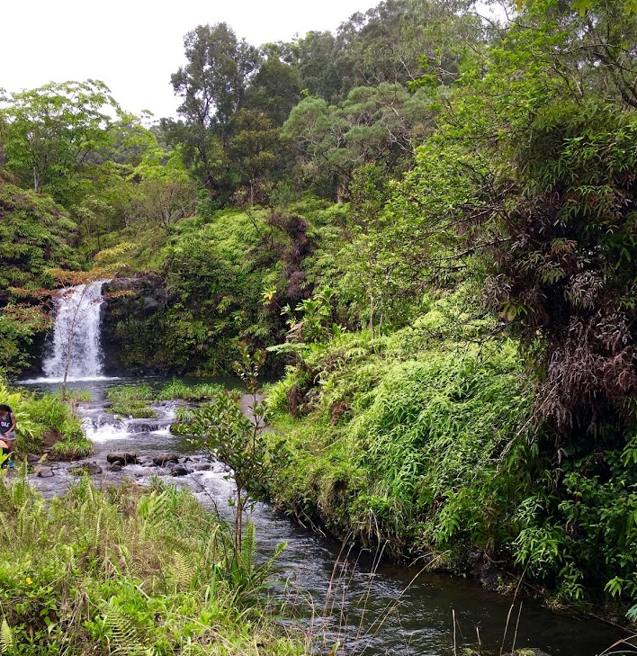 Waterfalls along the Road to Hana