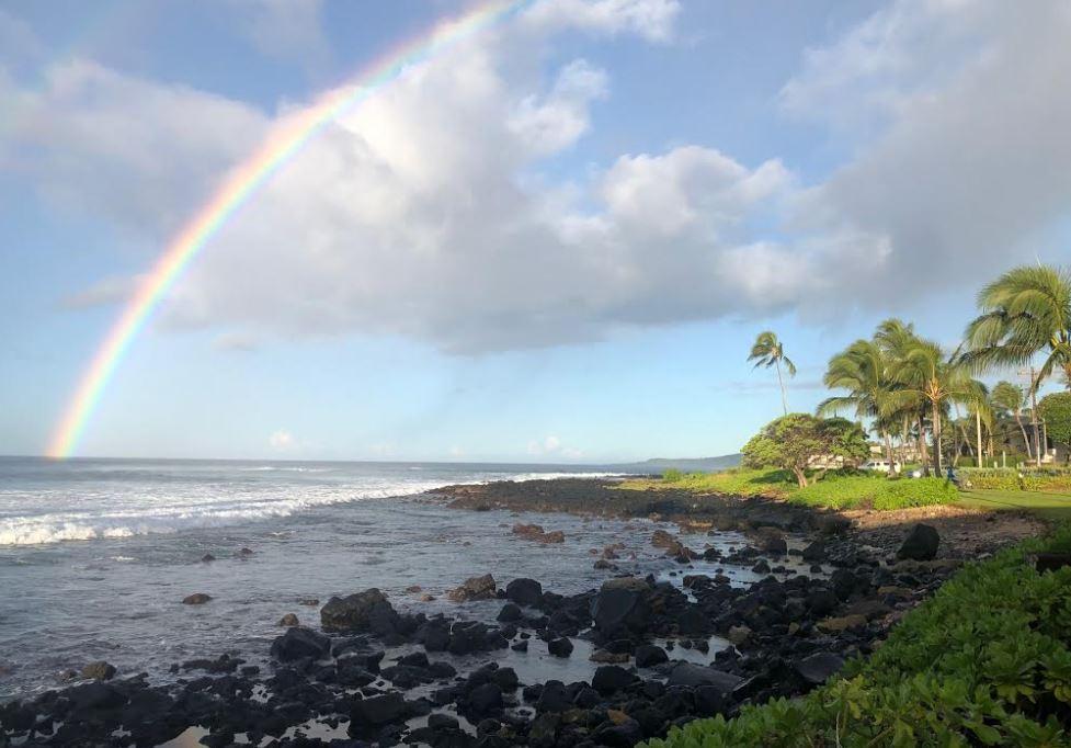 kauai photo for blog.JPG