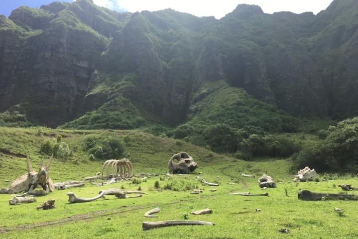 kong skull island boneyard hawaii