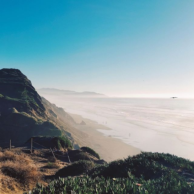 Ocean Beach Dunes 🌊  Ocean Beach in San Francisco looks out to over 6,000 miles of open ocean.   It's one of our favorite local spots to go on a hot day, or enjoy a nice hike on the seaside cliffs.   Sit back, relax, and hear the massive waves crashing below you from this vantage point ⛰ . . . . . . #travels #traveling #travelblogger #travel_capture #wanderlust #couplesgoals #california #ocean🌊 #beach #travelgram #beachday #weekendvibes #travelphotography #traveler #adventurer