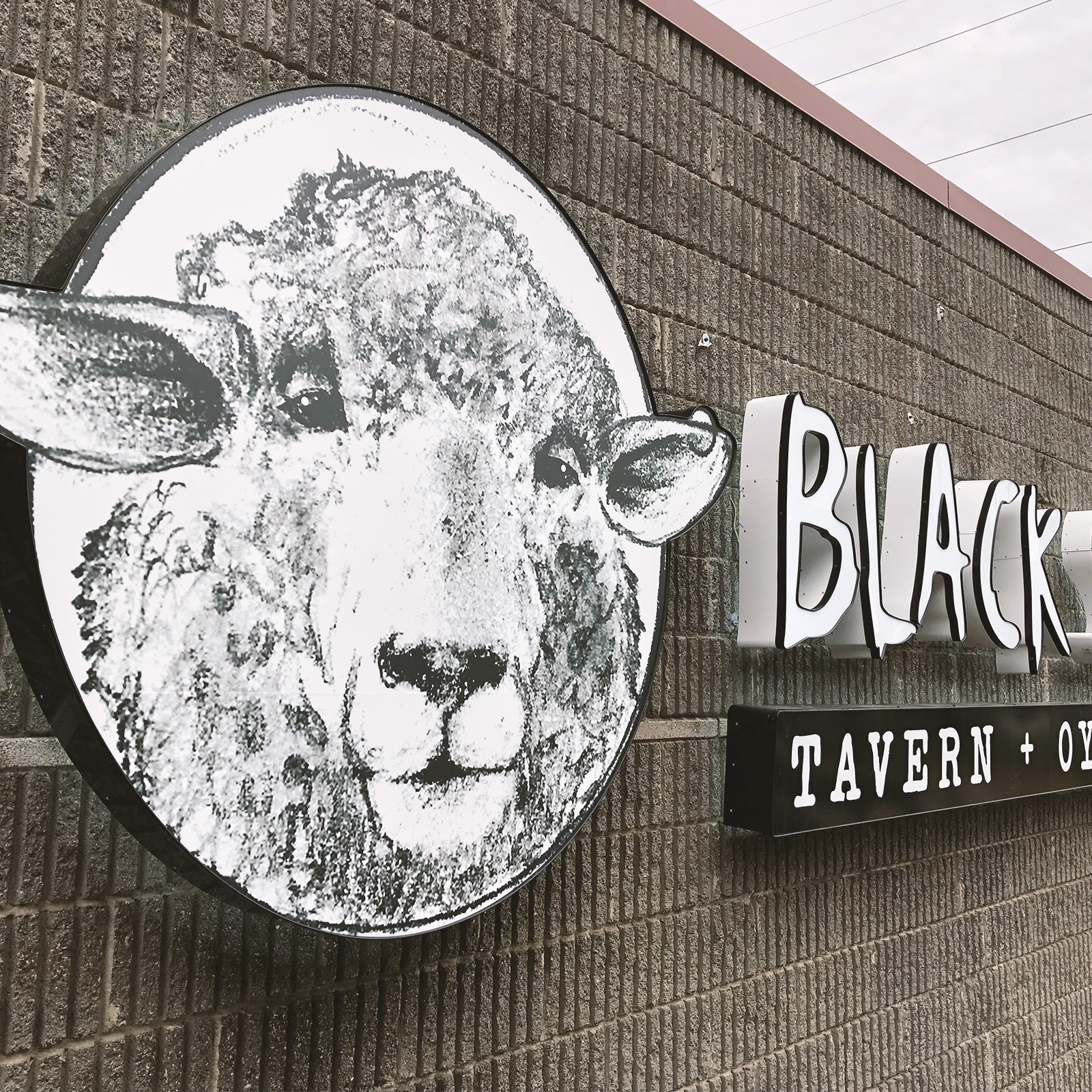 Black Sheep Signage -