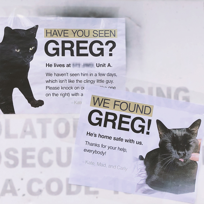 Lost Cat Flyers -