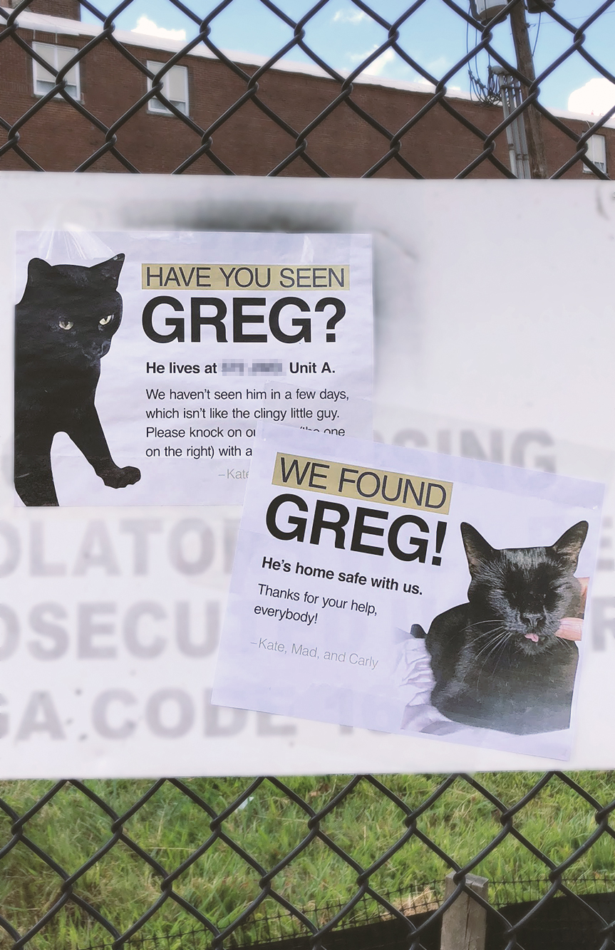 flyer_greg_lost-and-found_2.jpg