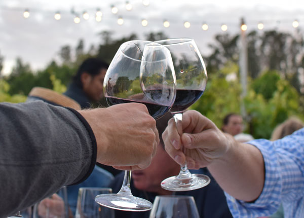 Taste Our Wines - Visit us and enjoy a tasting flight, glass or bottle of wine in our intimate tasting room or beneath the giant oaks overlooking the vineyard. Open Saturdays 12-5 pm and Summer Fridays 3-8 pm (6/28 to 8/30). Click here to make a reservation