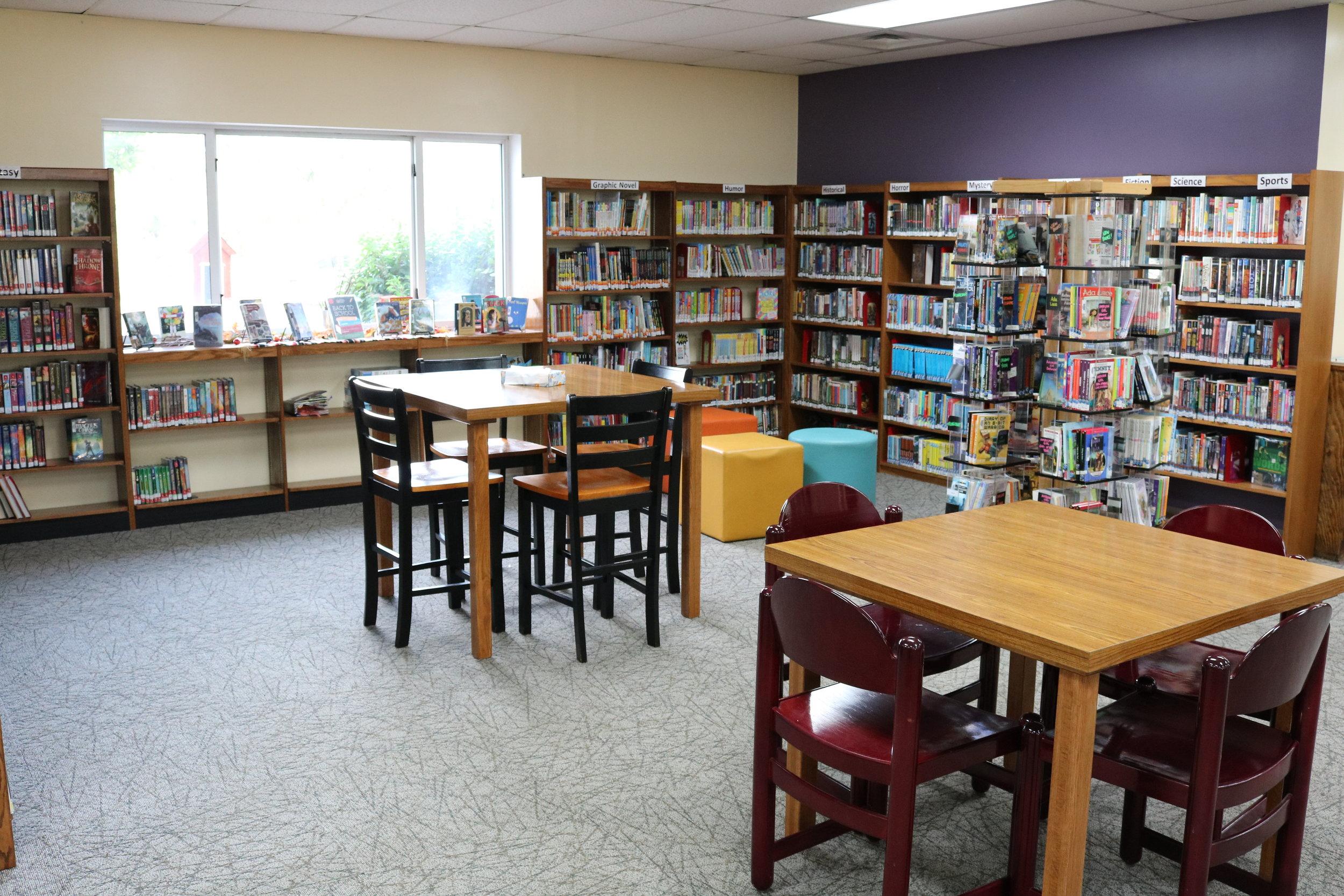 Nottawa Library Kids.JPG