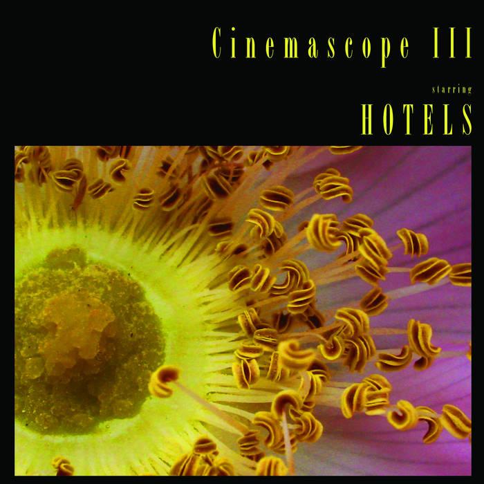 Cinemascope III - 2013