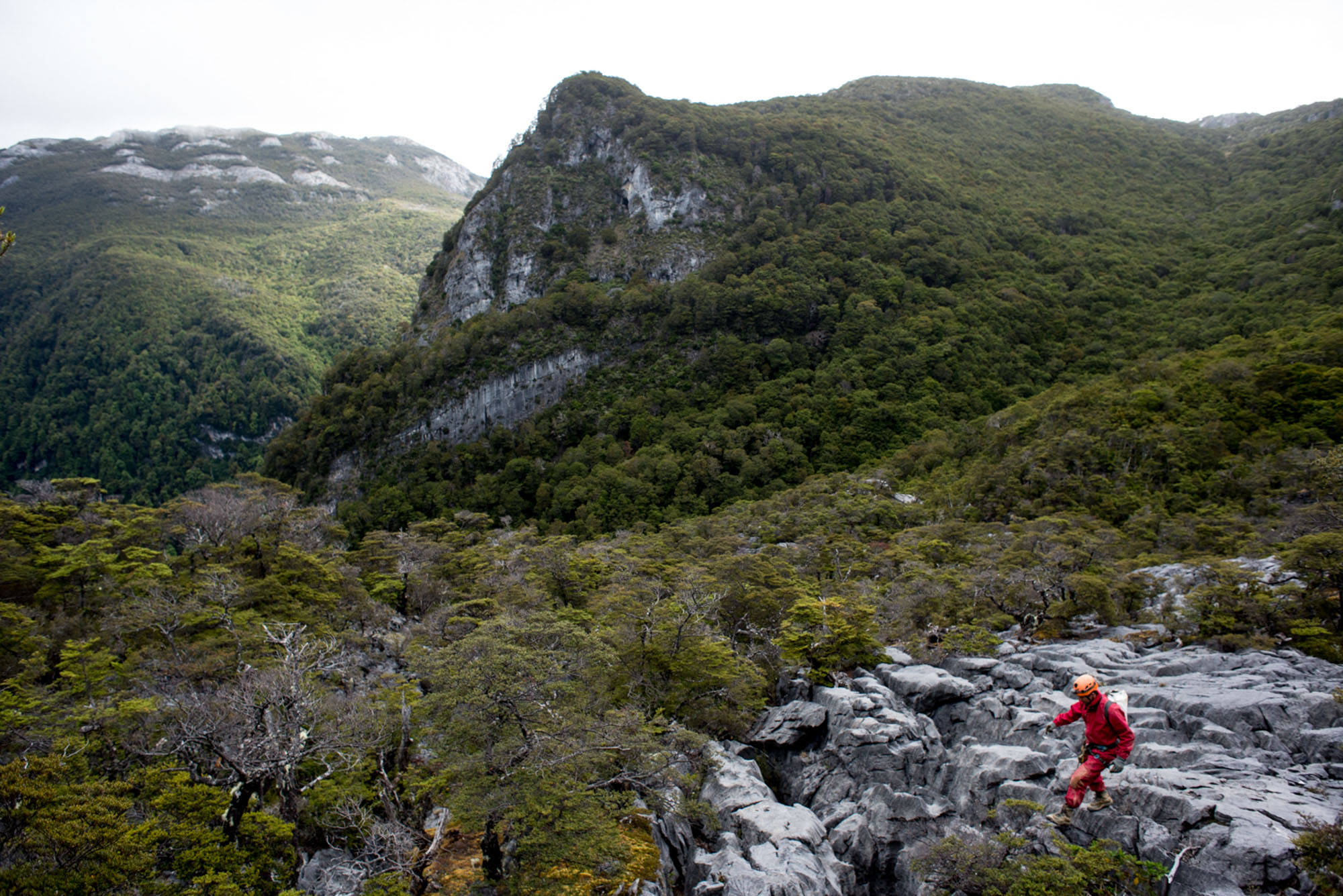 DSC_0782-Craig on walk of Karst rock from Bulmer to camp.jpg