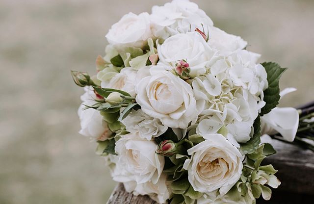 Loved opening up the emails to find Byron + Courtney's photos waiting for me, thanks @rick_liston . This colour palette was dreamy! White, cream with hints of lime 🌱🌵🌿