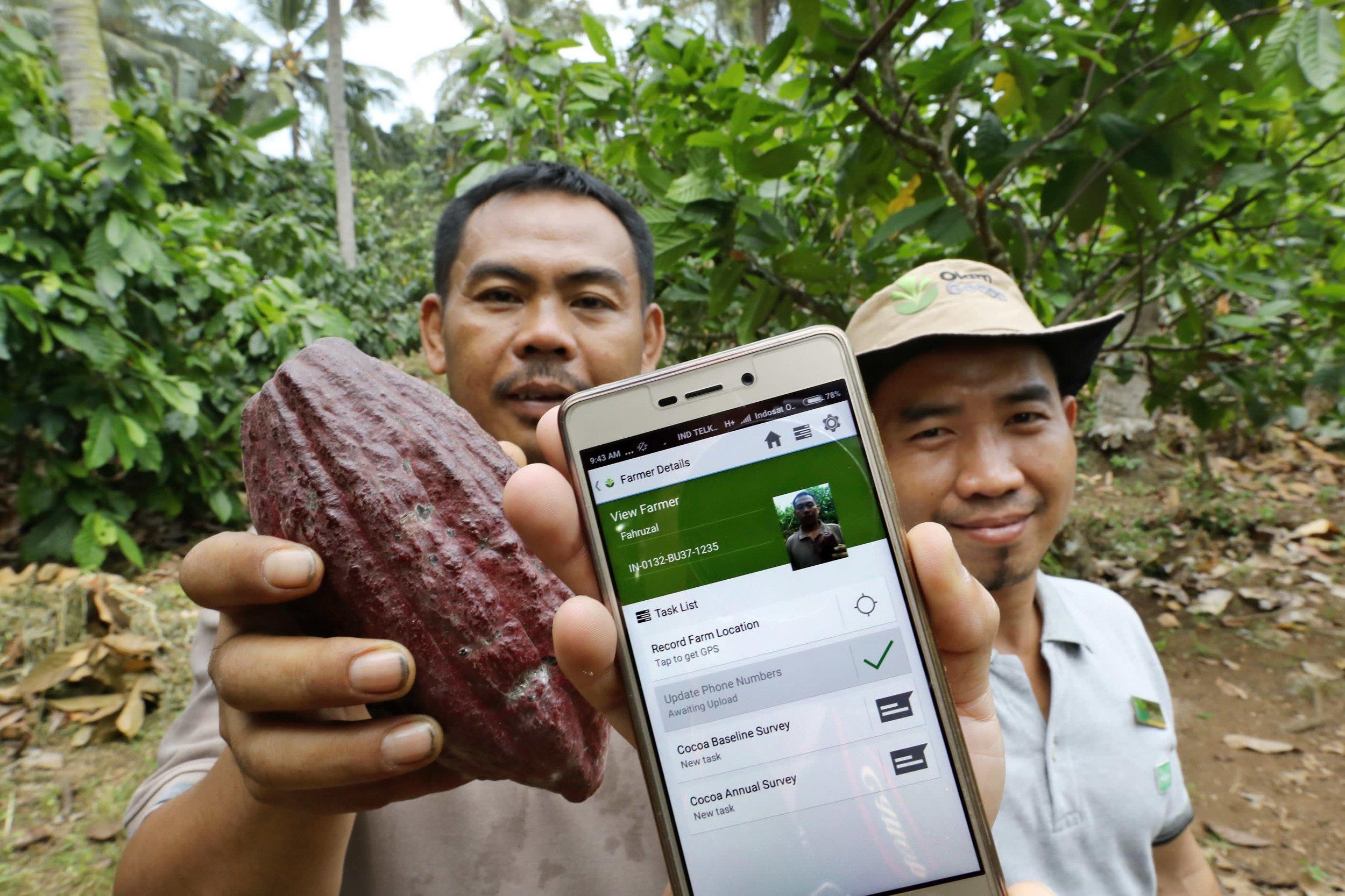 Olam_Smart farming.jpg