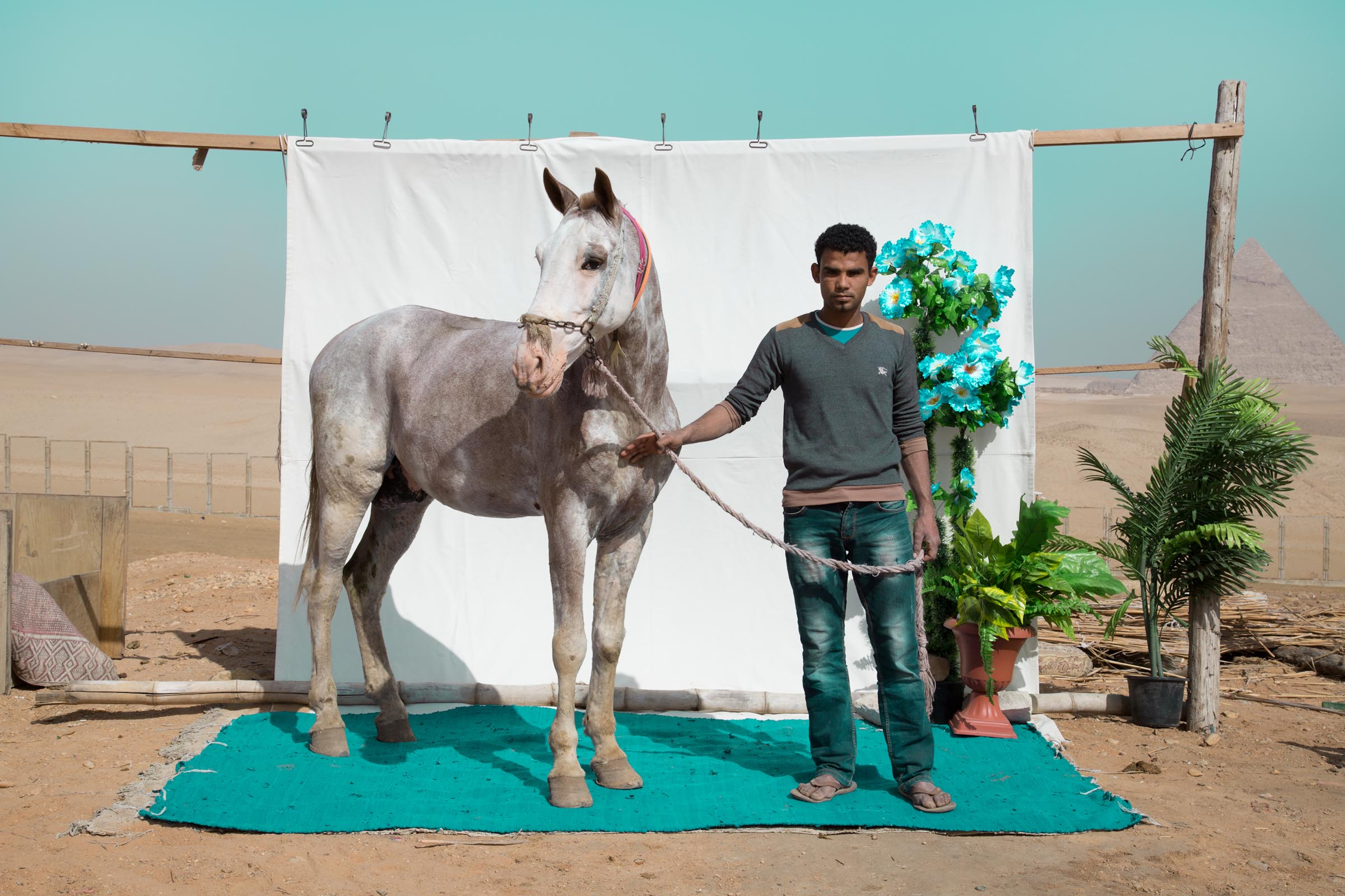 Bryony Dunne Mohamed with Habesha (horse) 2017