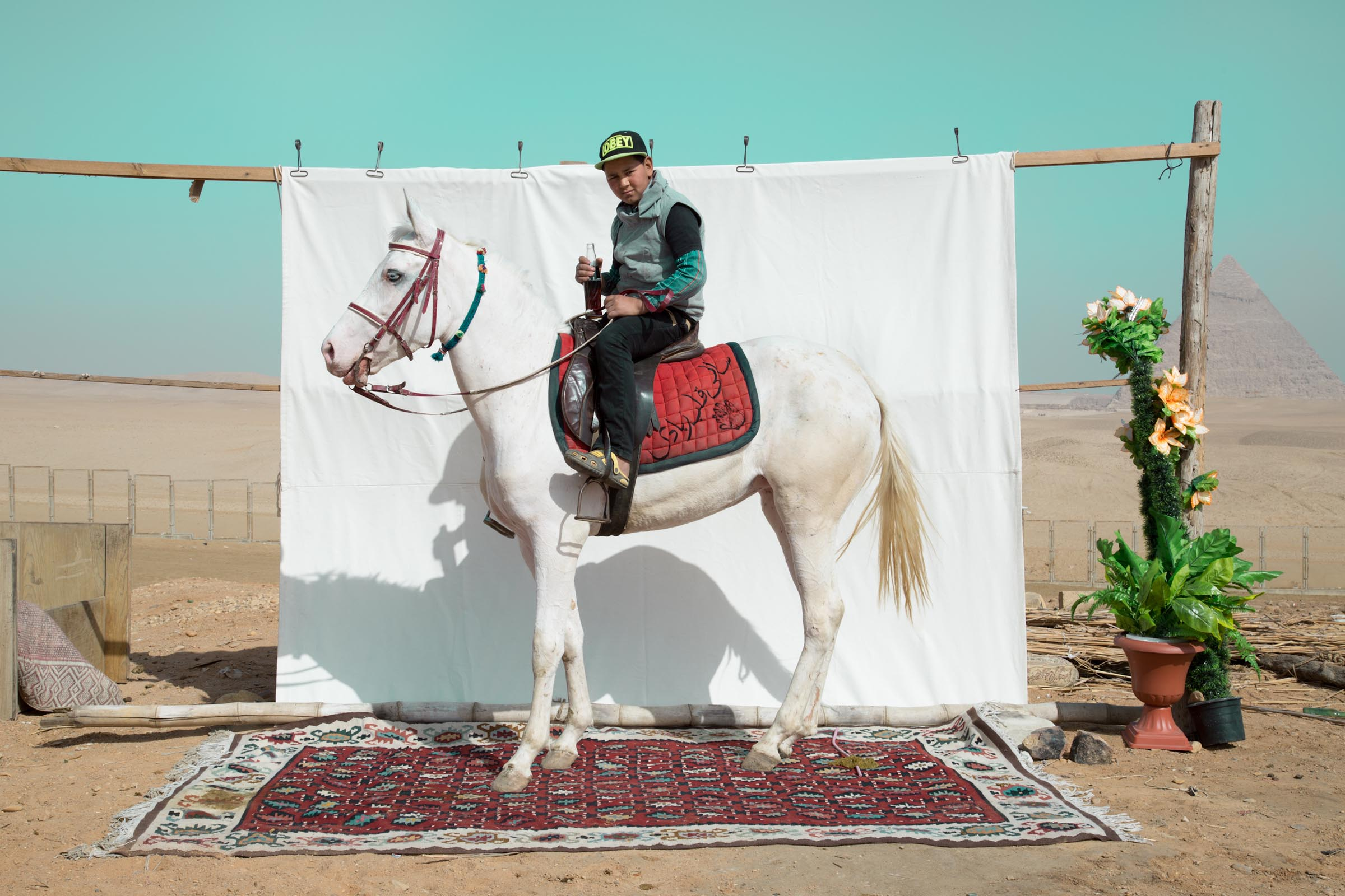 Bryony Dunne Youssef with Shams (horse) 2017