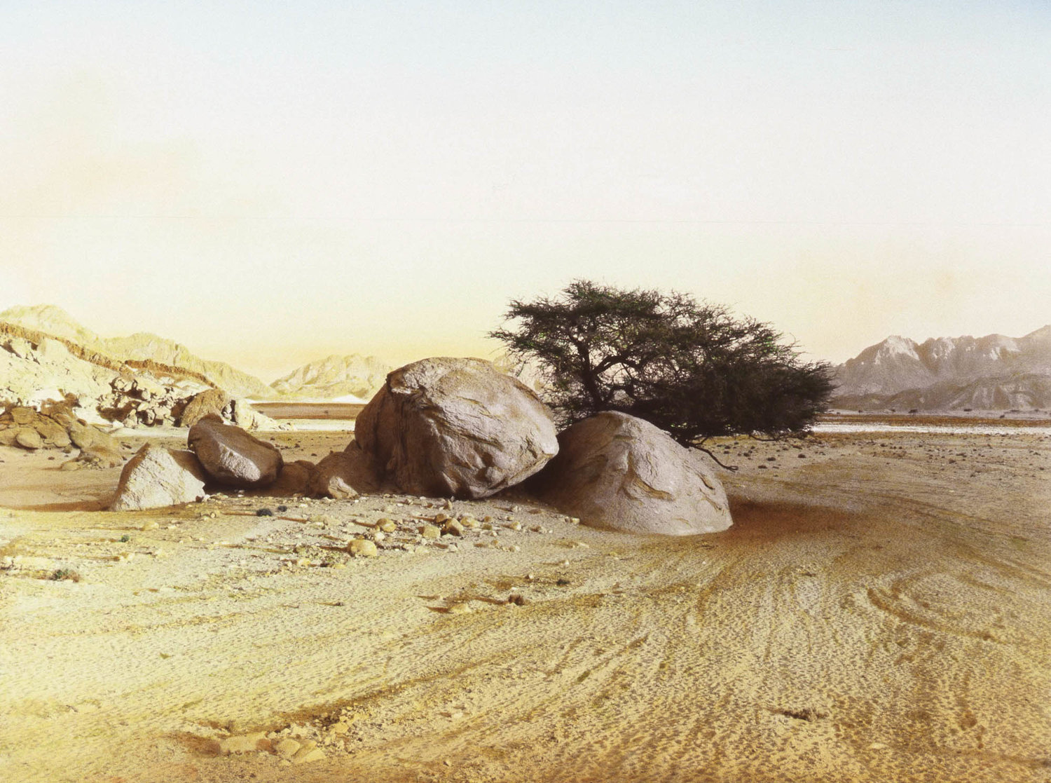 Barry+Iverson,+Two+boulders+and+tree,+Wadi+Masar,+South+Sinai,+1995.jpg