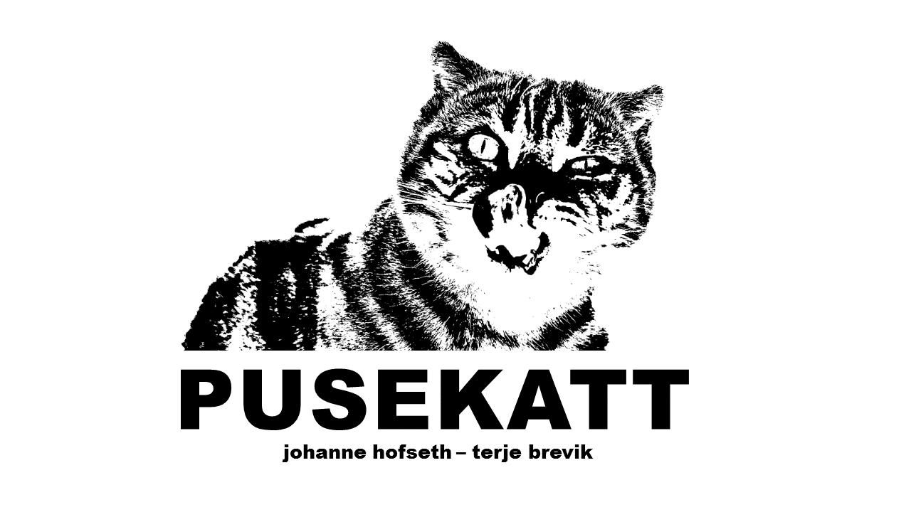 Pusekatt (NO)