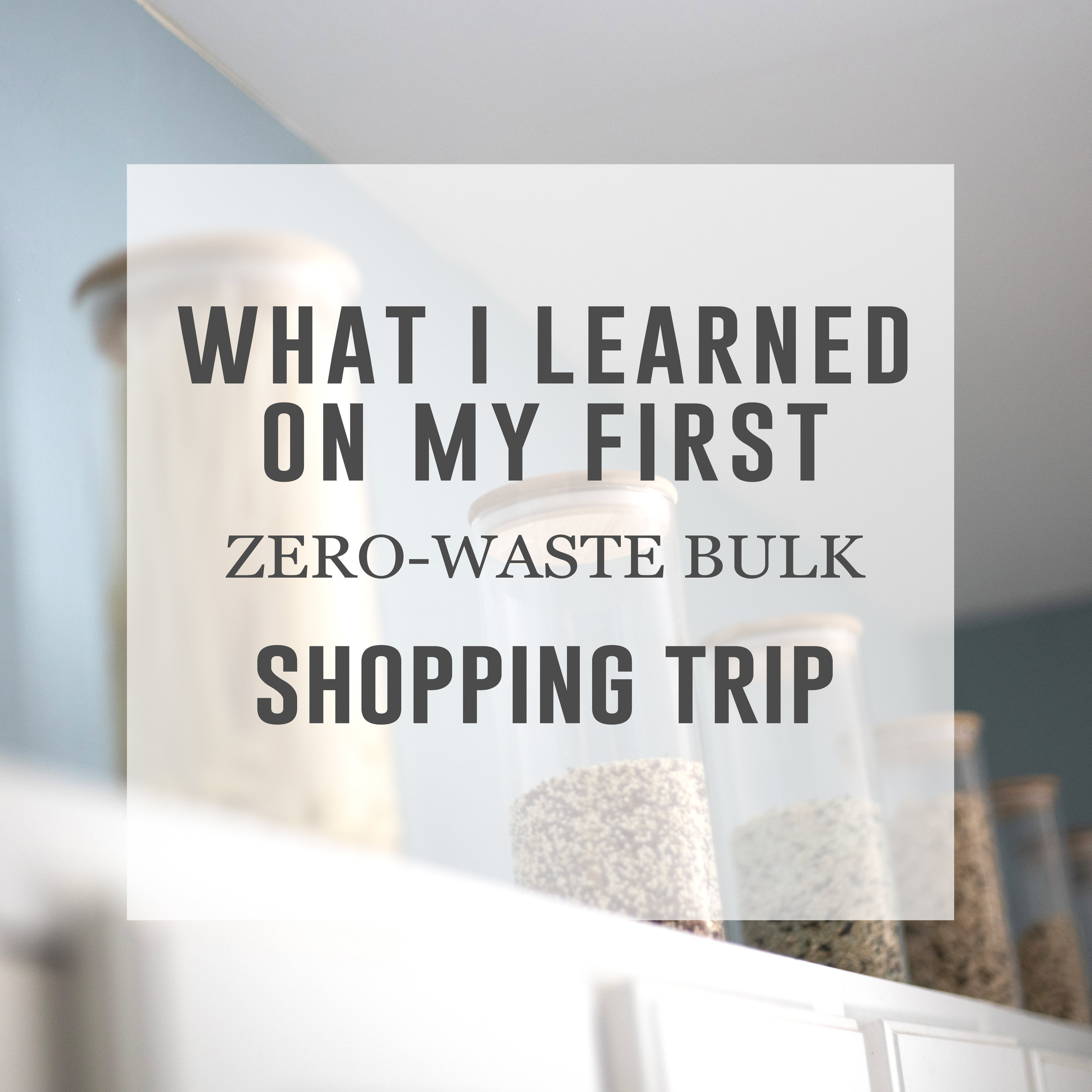 zero-waste-bulk-featured-image.jpg