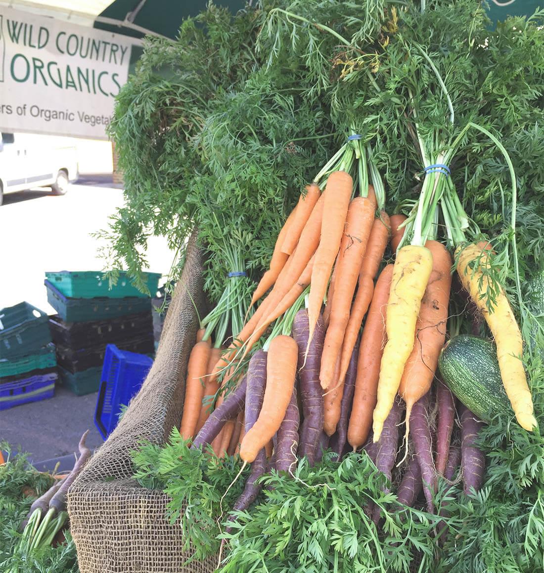Organic vs.Non-Organic Veggie Shopping -