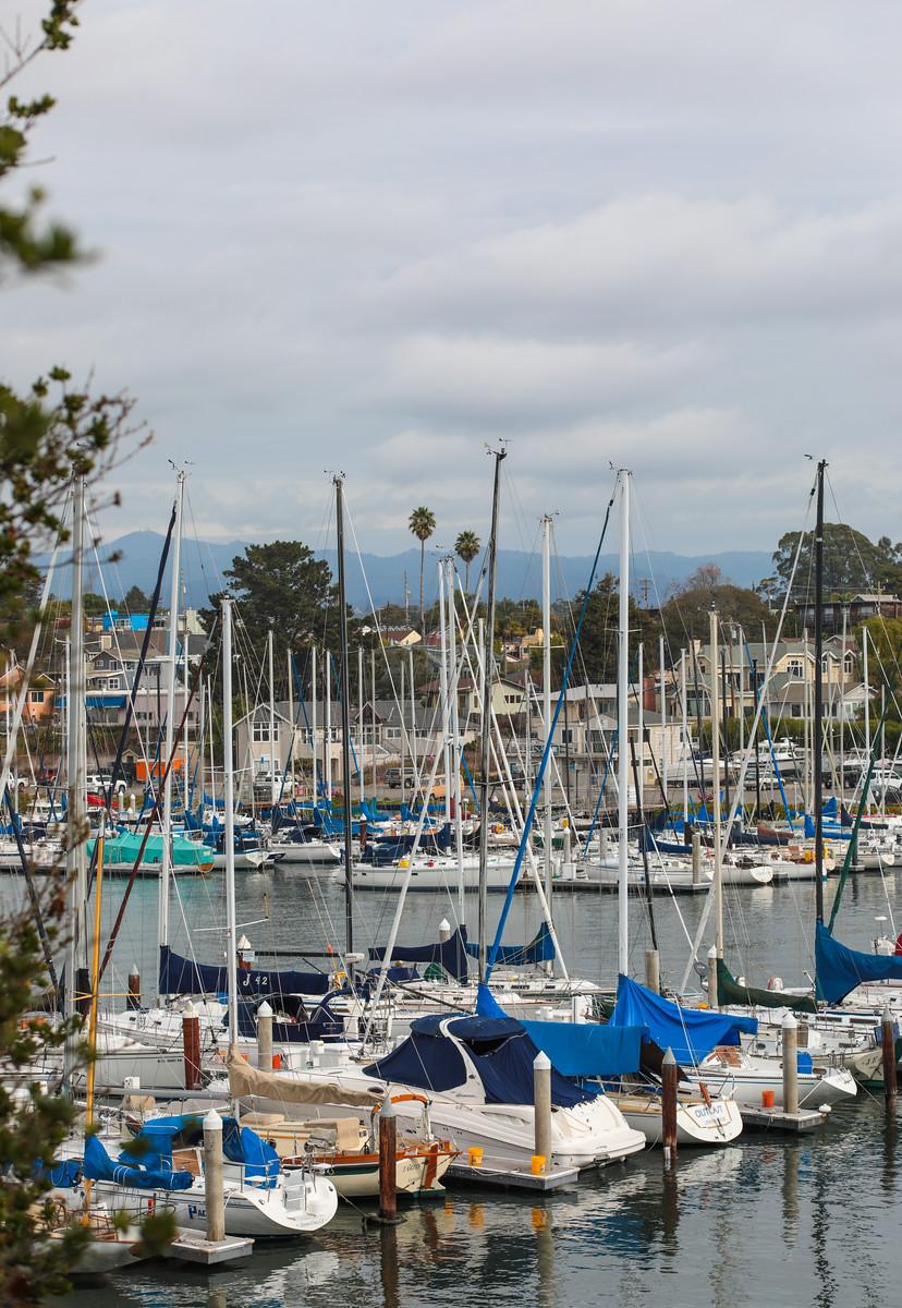 Seabright Santa Cruz Blu Skye Media-9650-X3.jpg