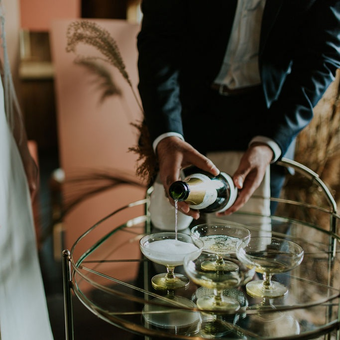 Expertly Planned - A luxury experience by Michigan's top wedding vendors