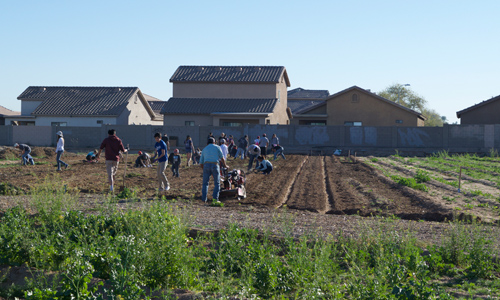 Volunteers help prepare soil and beds at the Spaces of Opportunity urban farm in Phoenix, Arizona
