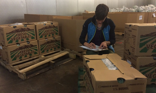 Kara Jones, packing local produce for the Community Food Bank of Southern Arizona