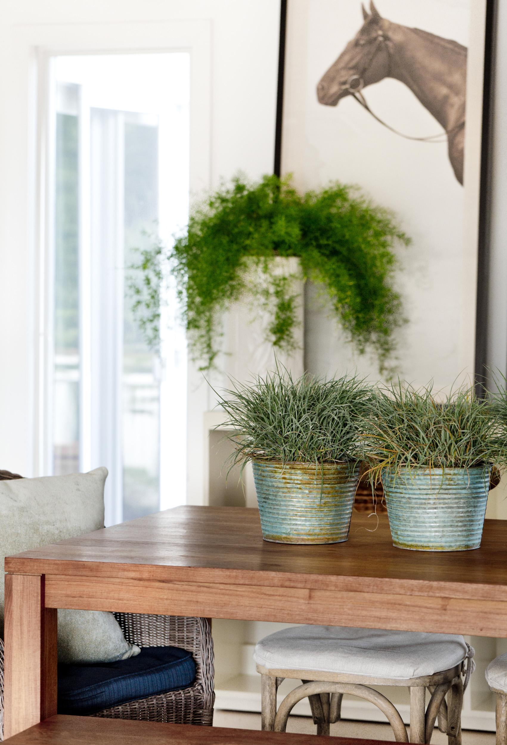 Caroline Kopp Best Interior Designers Top Interior Designers.jpg