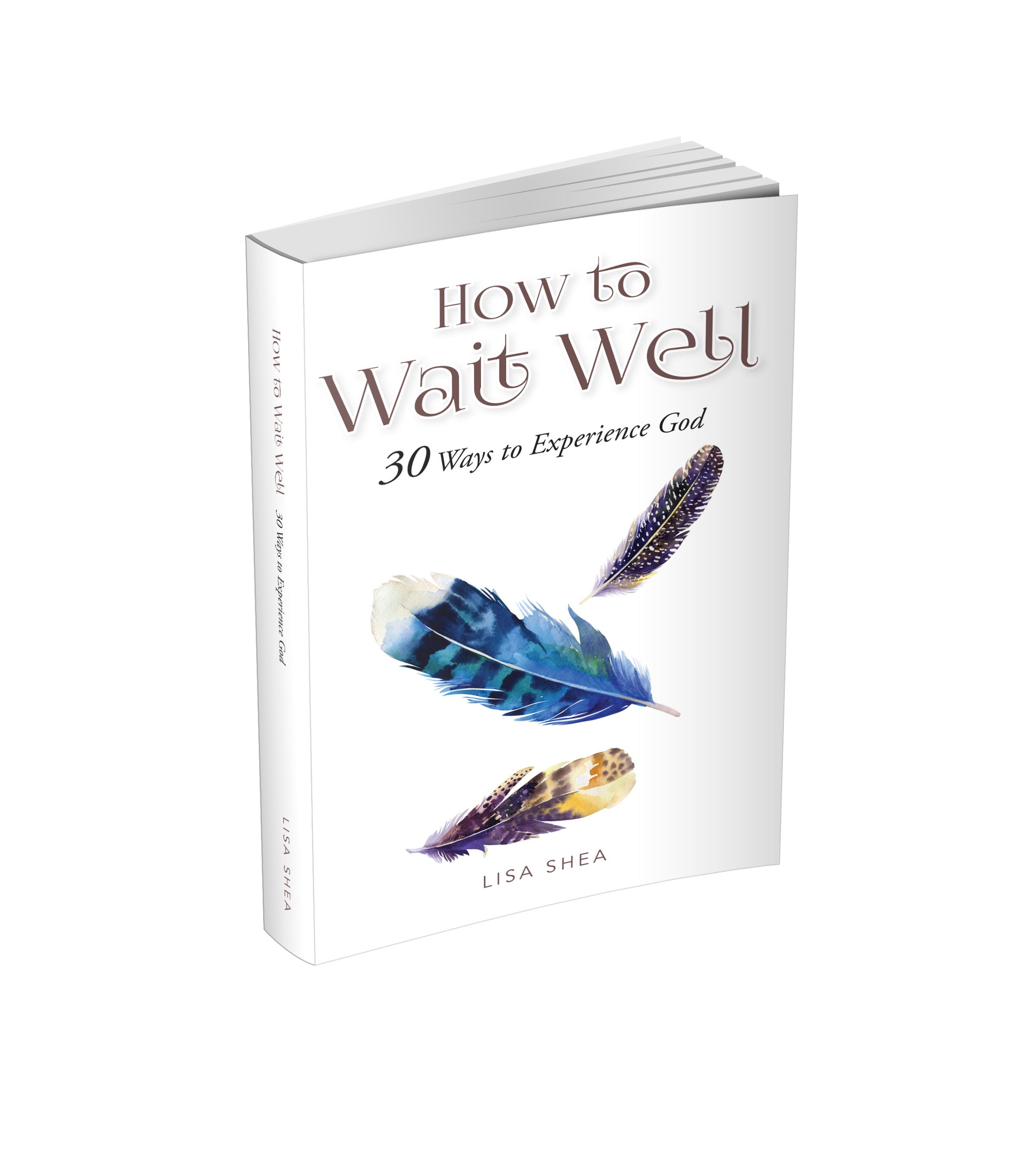How to Wait Well: 30 Ways to Experience God by Lisa Shea