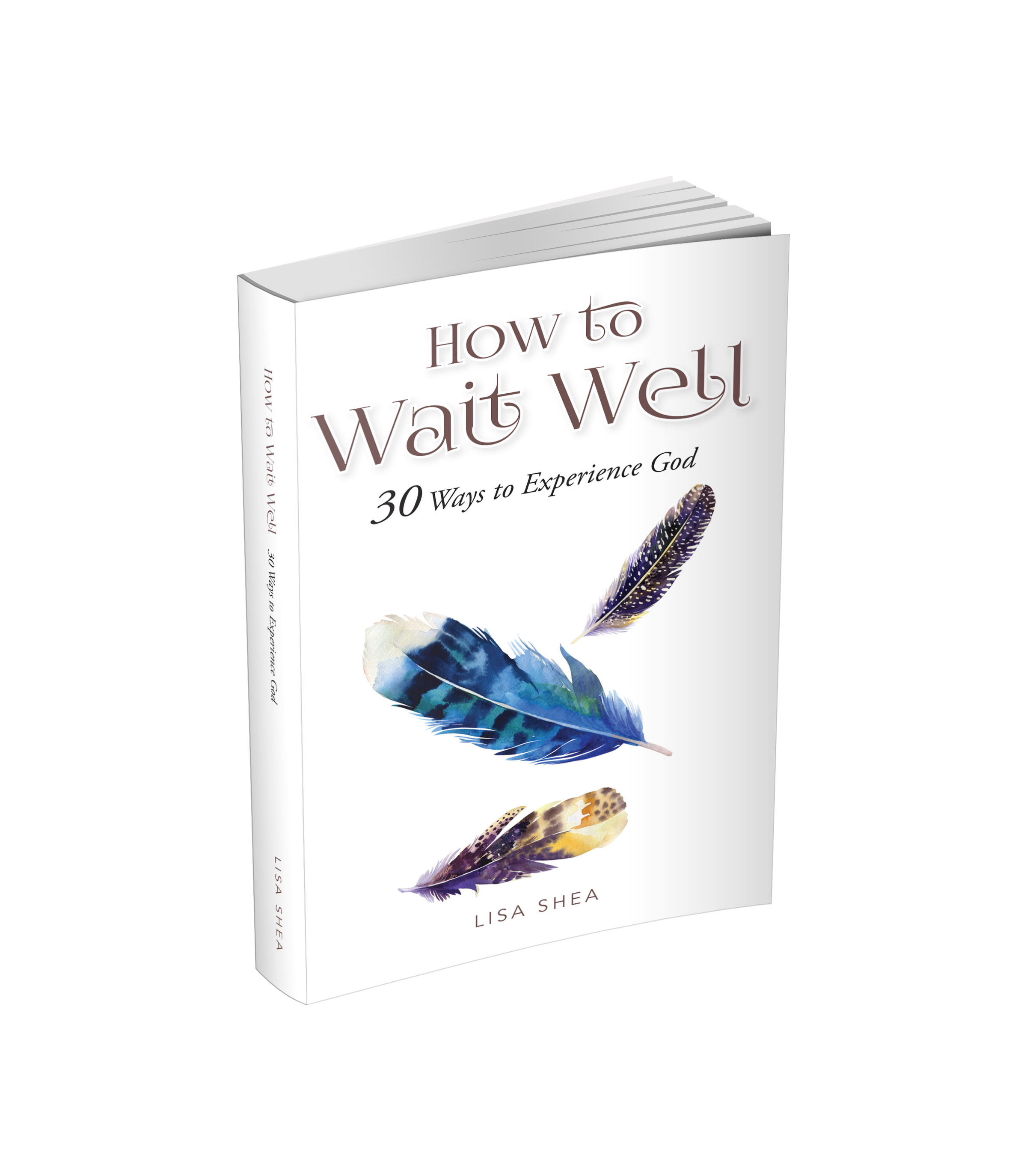 How to Wait Well 3-d book.png