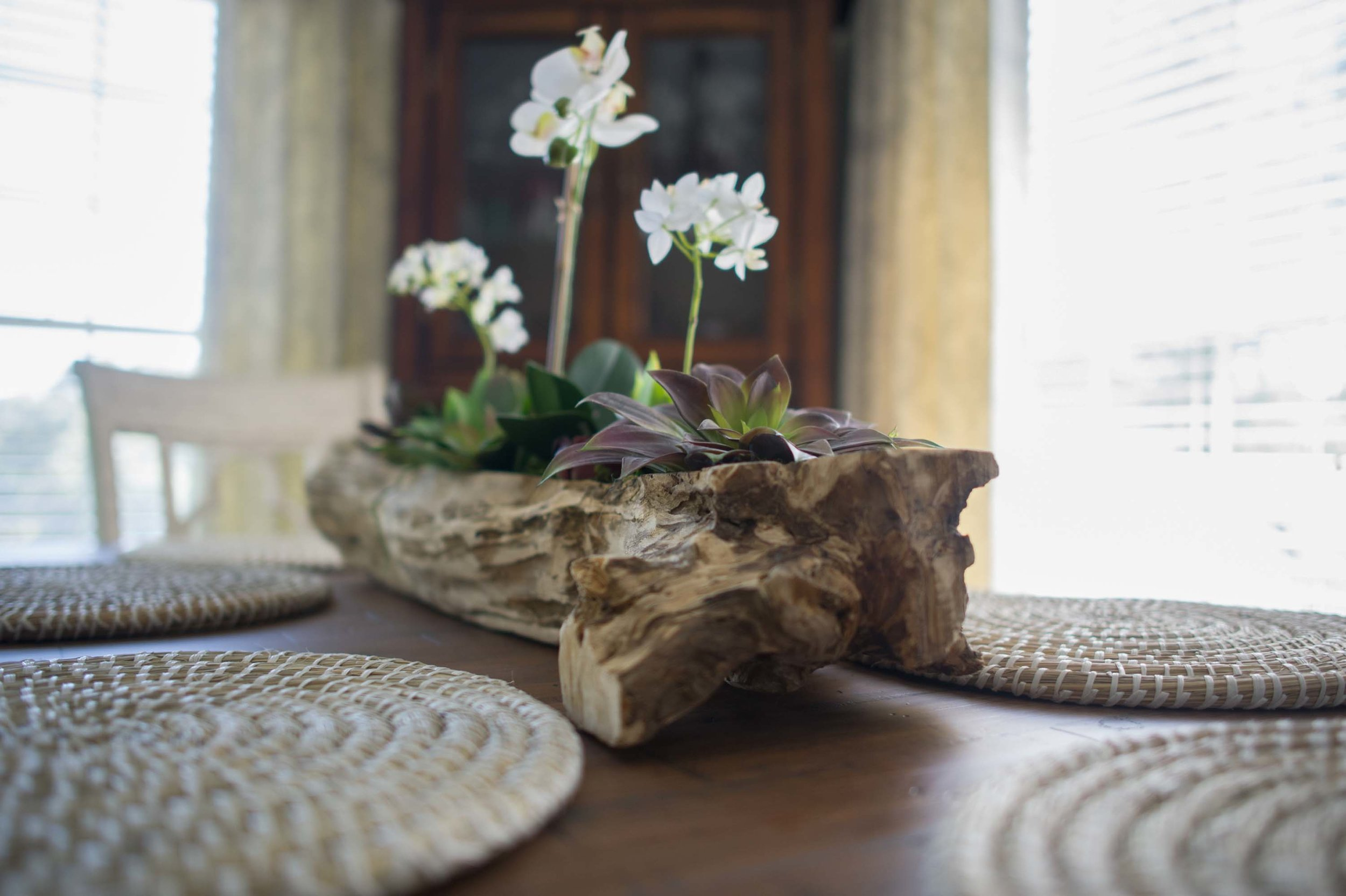 Dining room with plants on pot made of log