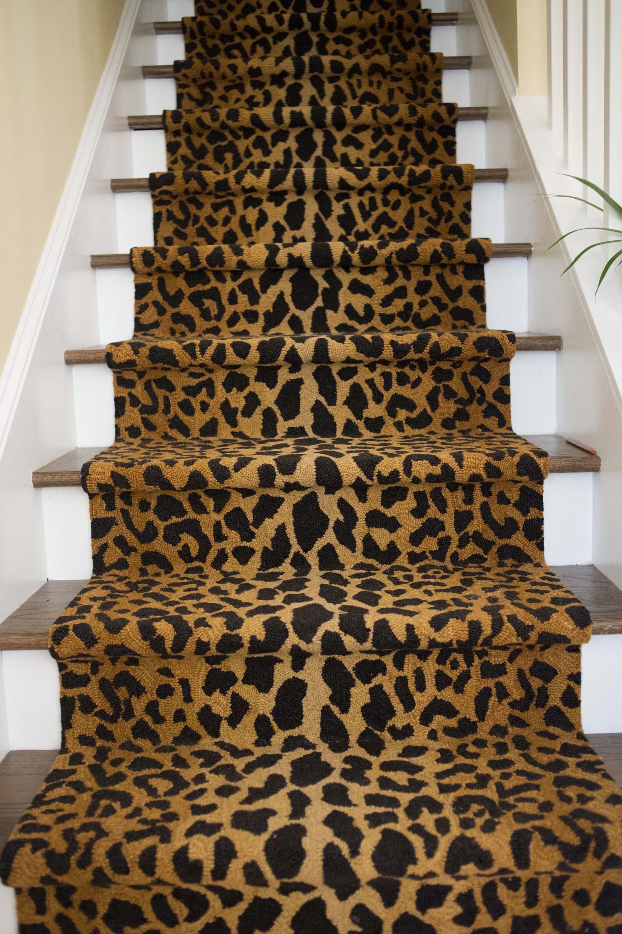 House interior staircase with leopard skin carpet