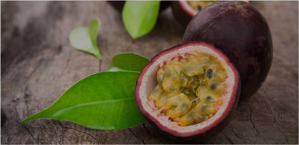WHY PASSION FRUIT? - Passion fruit vines grow above ground on poles, which leaves land open for ground dwelling crops so farmers can feed their families while generating income through a surplus of passion fruit.